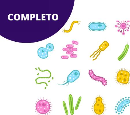MÓDULO II COMPLETO, trabajo sobre enfermedades graves y sistémicas con las Secuencias Numéricas