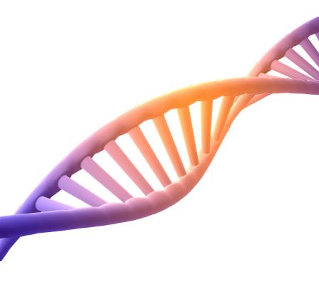 Aprendiendo a utilizar fórmulas y limpiar nuestro ADN